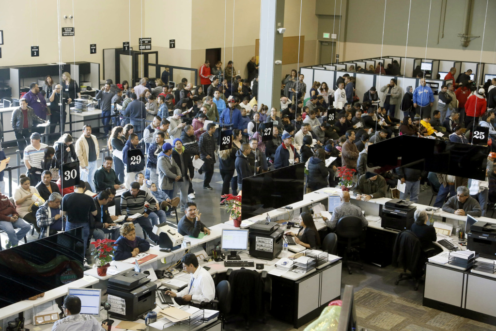 Hundreds of immigrants line up at a California Department of Motor Vehicles office to register for drivers licenses in Stanton, on Jan. 2, 2015, the first day California began issuing driver's licenses to the nation's largest population of immigrants in the country illegally.