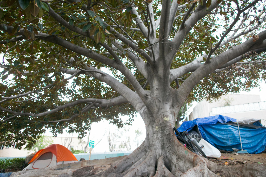 Tents are pitched near an offramp and freeway in Hollywood, California, on Friday, March 16, 2018. Residents there say they prefer living outside to using a homeless shelter where couples will have to be separated and strict scheduling is enforced.