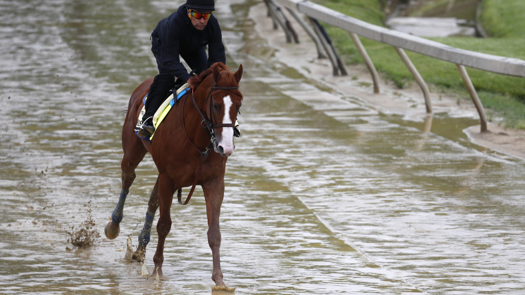 Kentucky Derby winner Justify, with exercise rider Humberto Gomez aboard, gallops around the track Thursday at Pimlico Race Course in Baltimore. The Preakness Stakes is scheduled to take place Saturday and Justify is the favorite.