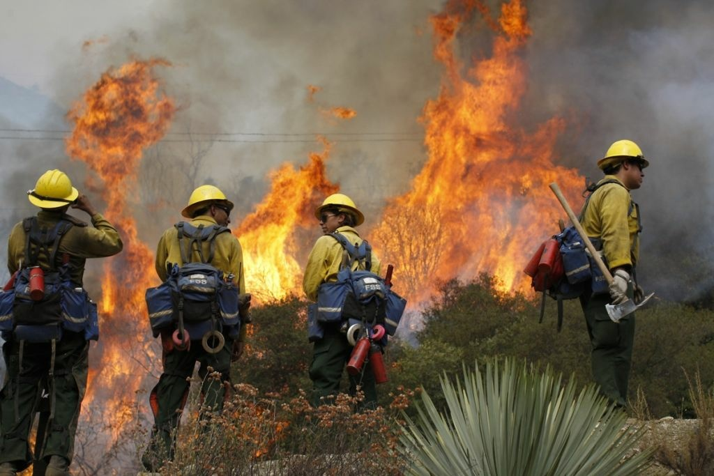 U.S. Forest Service firefighters stand near flames at the Williams fire in the Angeles National Forest on Sept. 4, 2012 north of Glendora.