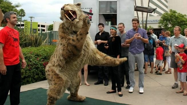The Natural History Museum's giant saber-toothed cat puppet walked along Wilshire toward the Page Museum on Friday, Sept. 7.