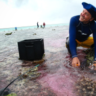 Ken Caldeira of the Carnegie Institution for Science takes a water sample during his experiment on part of the Great Barrier Reef. The water is slightly pink because his team is using a dye to trace an acid-neutralizing chemical as it flows across the ree