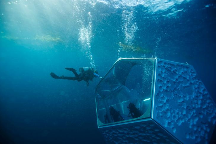 Doug Aitken, Underwater Pavilions, 2016, installation view, Avalon, California.