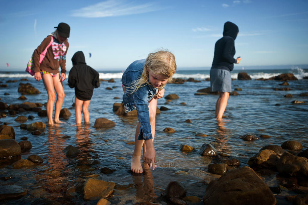 Eight-year-old Sophia of Thousand Oaks points out a starfish at Leo Carrillo State Beach in Malibu while spending the day with her family on July 24, 2013.