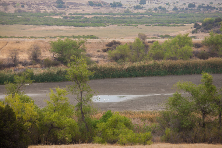 Forty years ago, the LADWP decided to establish a pond near the Chatsworth Reservoir to support wildlife. But the city says the pond was intended to be self-supporting while it lasted.