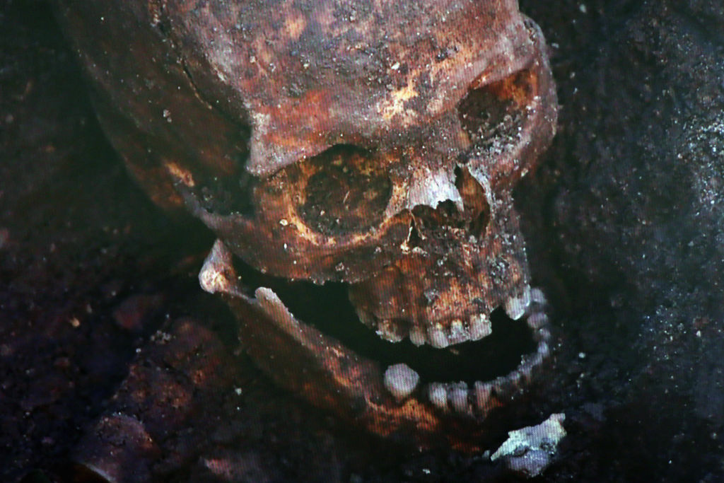 A television screen displays the skull what is believed to be King Richard III during a press conference at Leicester University on February 4, 2013 in Leicester, England. The University of Leicester has been carrying out scientific investigations on remains found in a car park to find out whether they are those of King Richard III since last September, when the skeleton was discovered in the foundations of Greyfriars Church, Leicester.