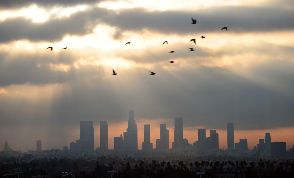Birds fly across the sky at daybreak over the downtown Los Angeles skyline on December 14, 2011. According to the state's Air Resources Board earlier this month, California has the worst air quality in the country, with 40 percent of pollution contributed by passenger cars and light-duty trucks.