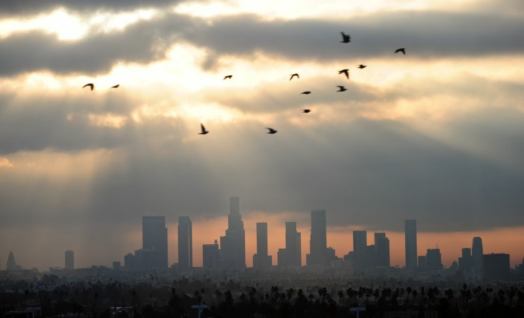 Birds fly across the sky at daybreak over the downtown Los Angeles skyline on December 14, 2011.