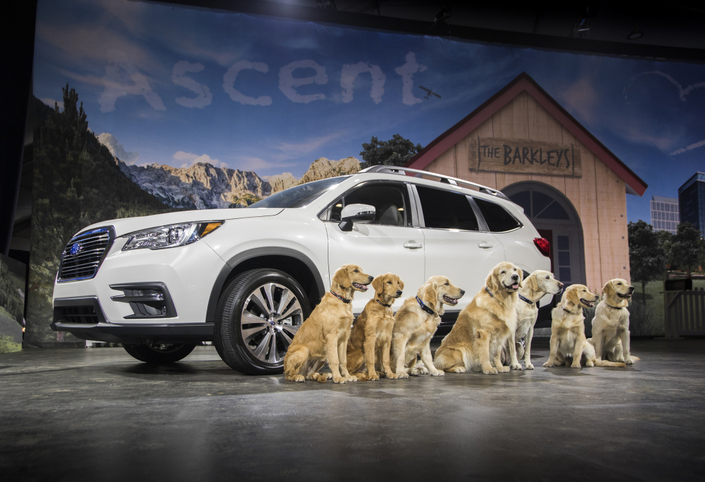 The Subaru Ascent is the largest car made by the Japanese auto makers, with seven seats.