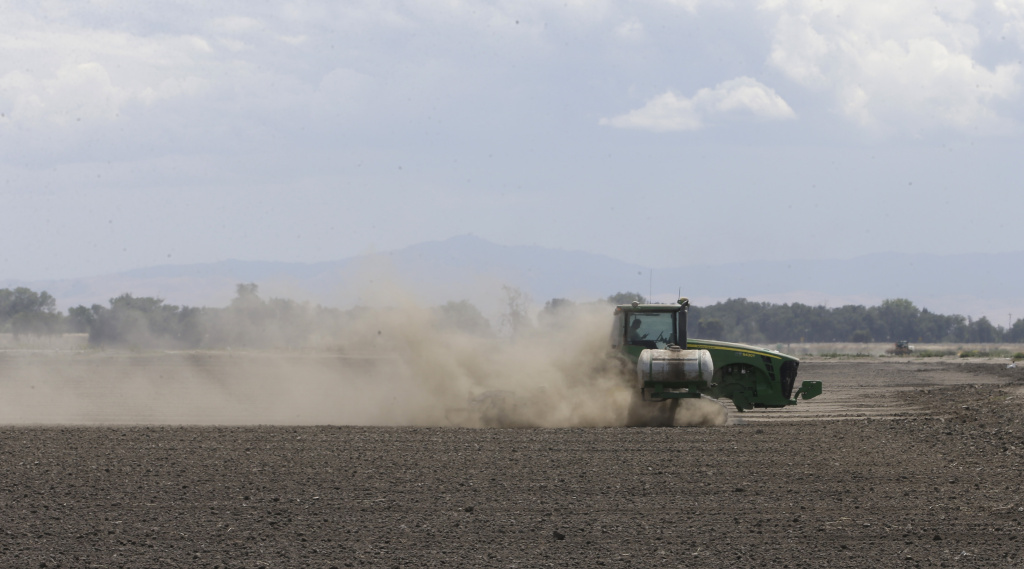 In this photo taken Monday, May 18, 2015, a tractor tills the dry land on the acreage  farmed by Gino Celli, near Stockton, Calif. Celli, who farms 1,500 acres of land and manages another 7,000 acres, has senior water rights and draws irrigation water from the Sacramento-San Joaquin River Delta.  Farmers in the Sacramento-San Joaquin River Delta who have California's oldest water rights are proposing to voluntarily cut their use by 25 percent to avoid the possibility of even harsher restrictions by the state later this summer as the record drought continues. (AP Photo/Rich Pedroncelli)