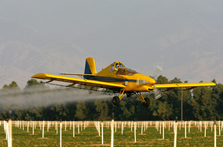 A crop duster airplane sprays Lanate, a powerful organophosphate pesticide banned in most European countries, on cotton and potato fields on May 7, 2008 near the town of Arvin, south of Bakersfield, California.