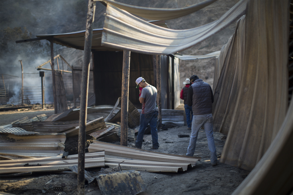 Workers look at collapsed stalls at Rancho Padilla, where 29 horses died on December 6, 2017 in the Creek Fire near Sylmar, California.