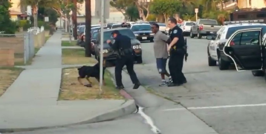 After arresting Leon Rosby, his two-year-old Rottweiler, Max, jumps out of the car. Max barks and jumps at one of the officers, and the officer shoots him four times.