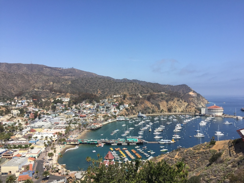 Boats moored at Catalina Island in June 2016.