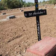 A grave marker for an unidentified migrant. Fewer migrant deaths are being reported north of the U.S.-Mexico border this year, with the number of people known to have died crossing into the U.S. down significantly from a year ago.