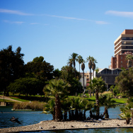 A view of the MacArthur Park lake.