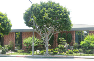 Culver City's Julian Dixon Library will be affected by schedule changes. File photo.