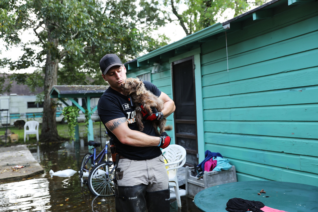 Matt Murray, a volunteer with an animal rescue organization, carries a small dog he found abandoned beside a flooded home on September 5, 2017 in Orange, Texas.Thousands of pets and livestock have either run away or been left to fend for themselves after Hurricane Harvey.