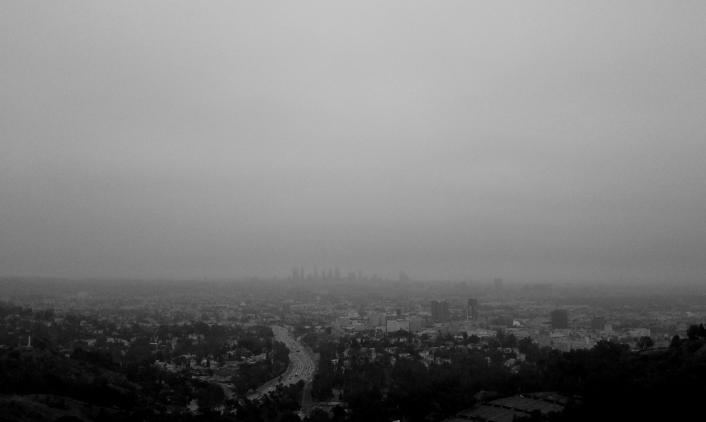 A foggy day in Los Angeles.
