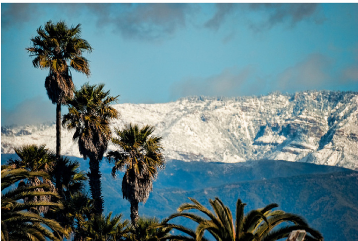palm trees ventura snow mountains