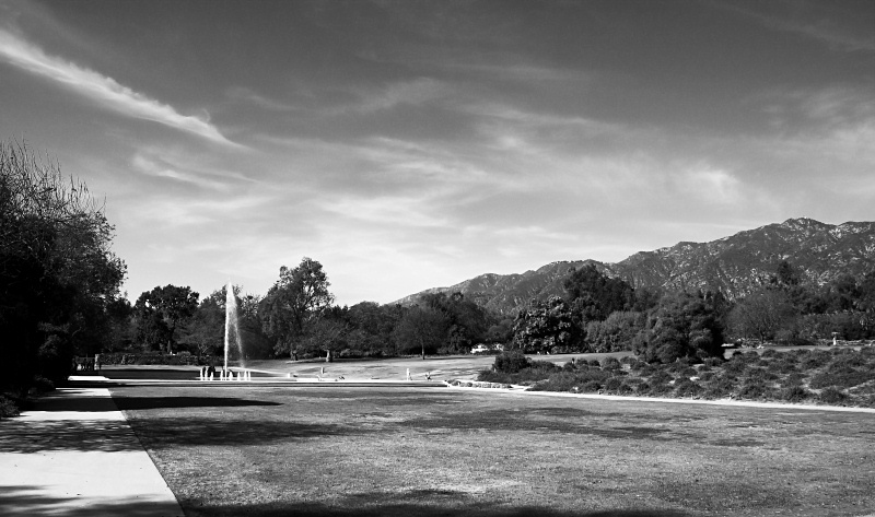 The L.A. Arboretum in Arcadia, Calif.