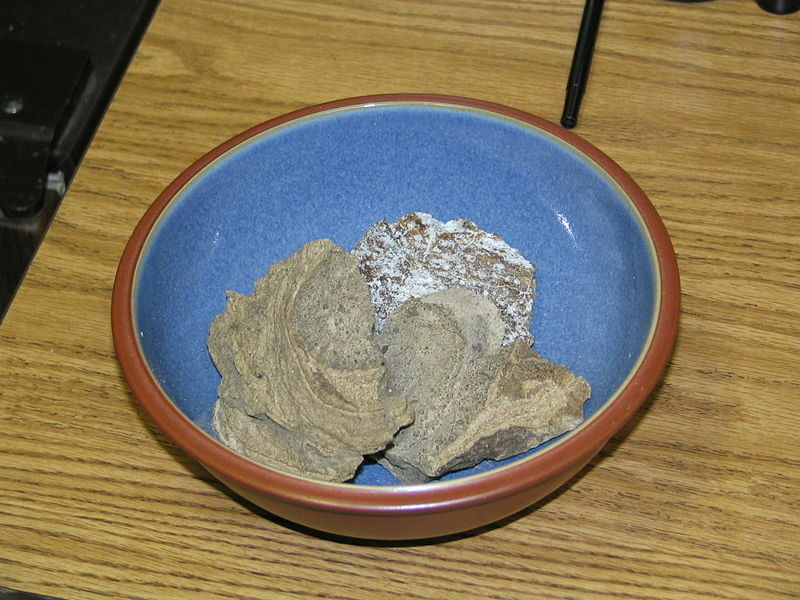 Image of Ambergris, a solid, waxy, flammable substance of a dull grey or blackish color produced in the digestive system of sperm whales.