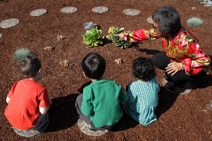 Zero Water Preschool Garden - 7