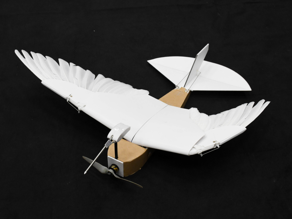 A team of Stanford University researchers designed the PigeonBot.