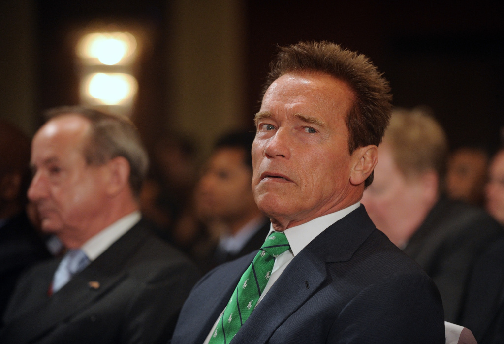 File: Former Governor of California Arnold Schwarzenegger attends the Delhi Sustainable Development Summit in New Delhi on February 2, 2012.