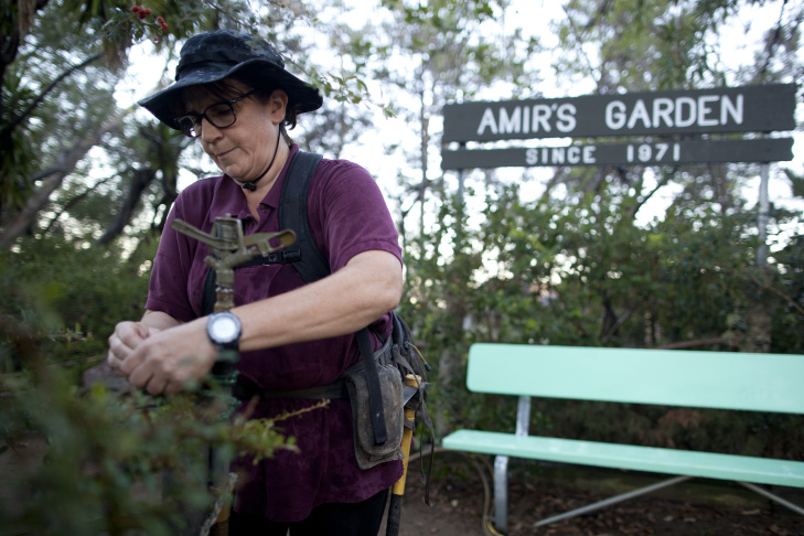 Kristin Sabo waters rose jade plants in Amir's Garden atop a hill South of Mineral Springs in Griffith Park. She maintains the garden, which Amir Dialameh created in 1971.