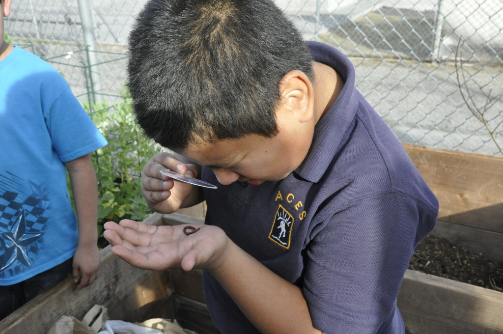 A young South L.A. resident participates in A Place Called Home's gardening program. A Place Called Home, located on Central Avenue, is one of the relatively few nonprofits in South Los Angeles.