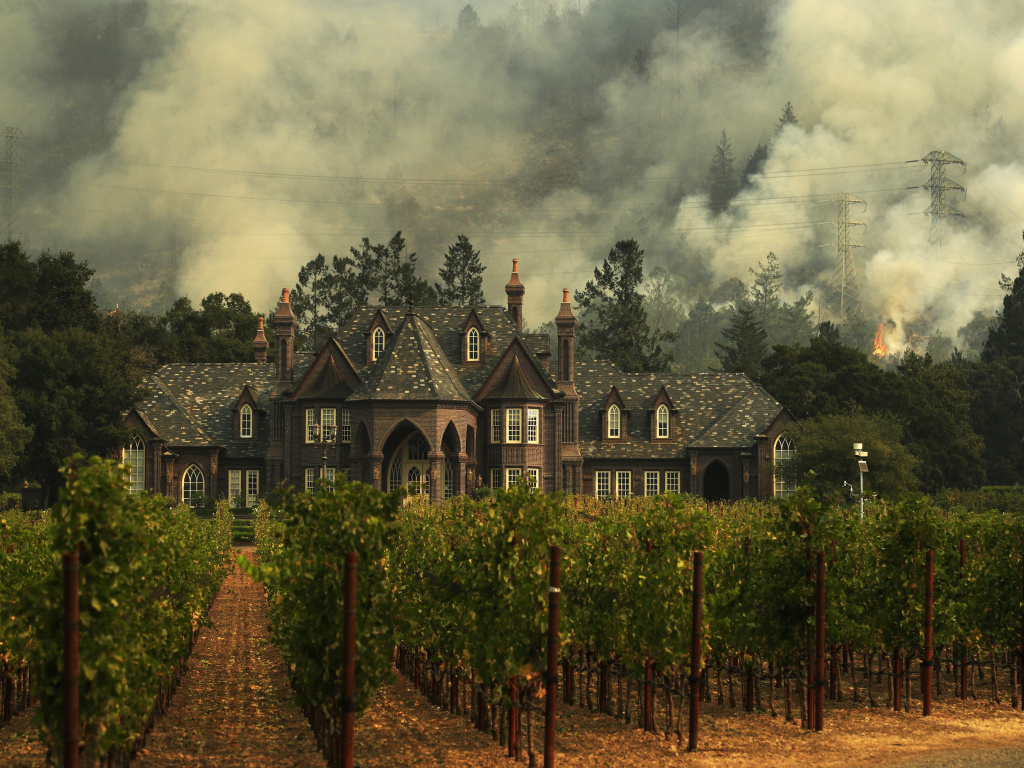 The Tubbs wildfire burns behind a winery in Santa Rosa, Calif., in 2017. A state report finds that it was caused by privately owned utility lines.