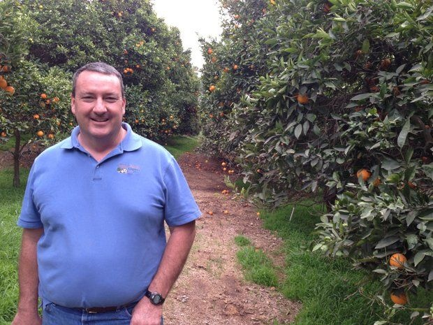 Noel Stehly, an organic citrus and avocado farmer in northern San Diego County, says he's never tried to bring in guest workers because the process is cumbersome and expensive.