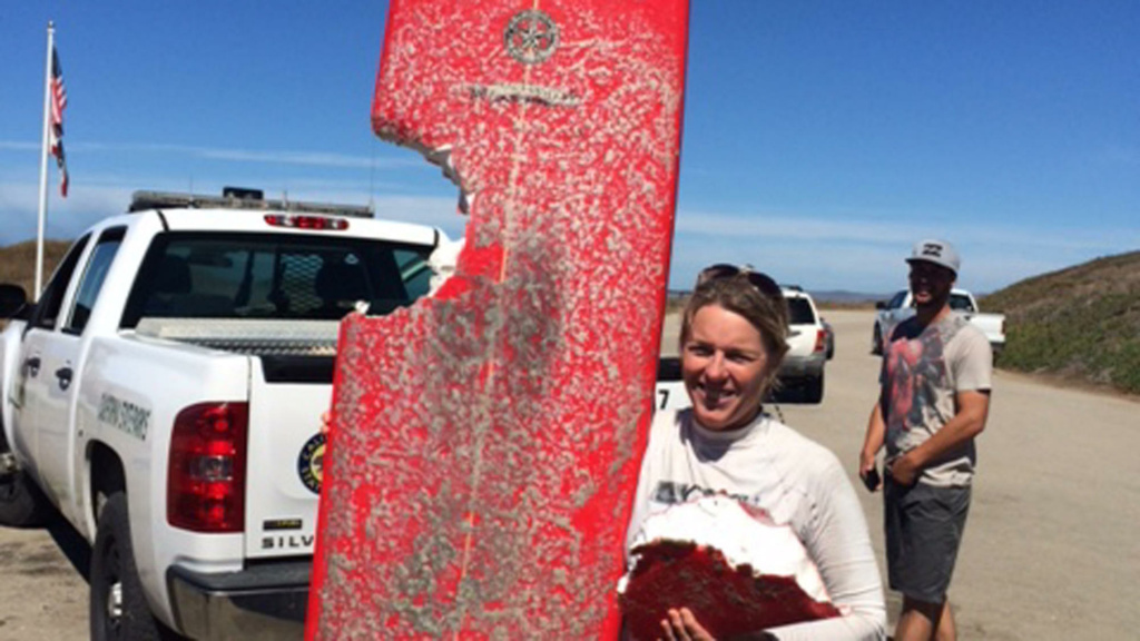 Elinor Dempsey and her surfboard, which had a bite taken out of it by a shark.