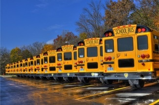 School buses in a row wait for eager children.
