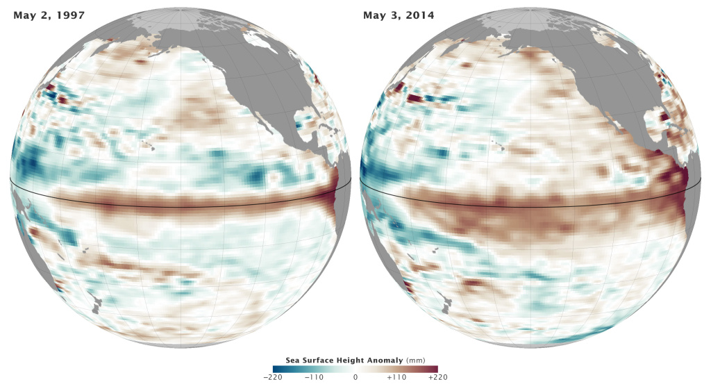 It's looking like another El Niño this year. The maps above show the ten-day average of sea surface height centered on May 2, 1997 (left), which was a big El Niño year, and May 3, 2014. Red and orange indicate where the water is warmer and above normal sea level. Blue-green show where sea level and temperatures are lower than average. Normal sea-level conditions appear in white.