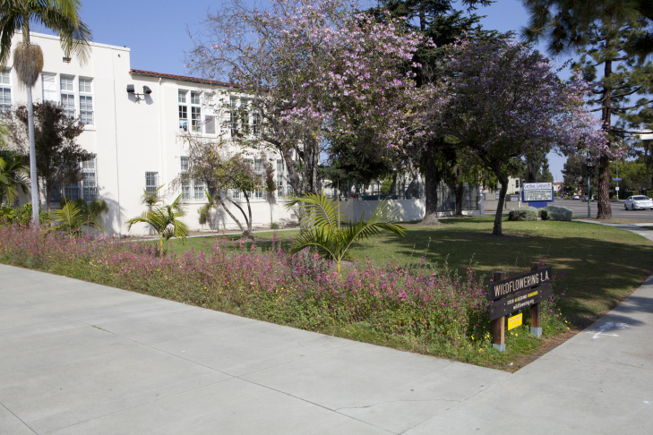 Carthay Center Elementary School, Site #40