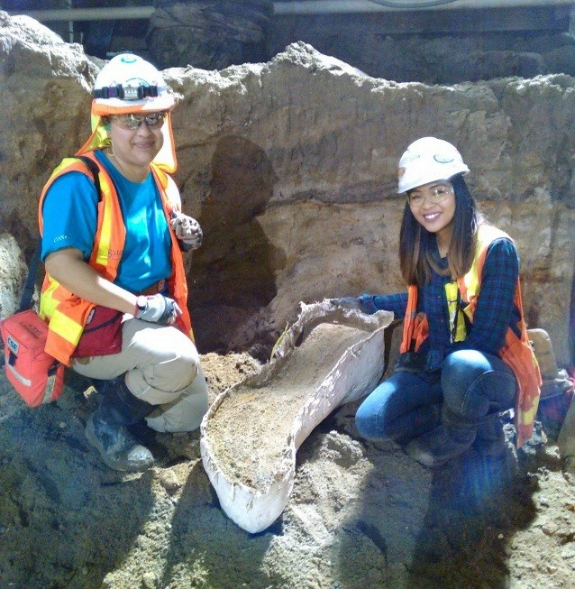 Cogstone workers place an ancient elephant bone in a plaster cast to safely remove it from the Wilshire/La Brea subway station excavation.