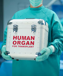 Many donated organs get thrown away.