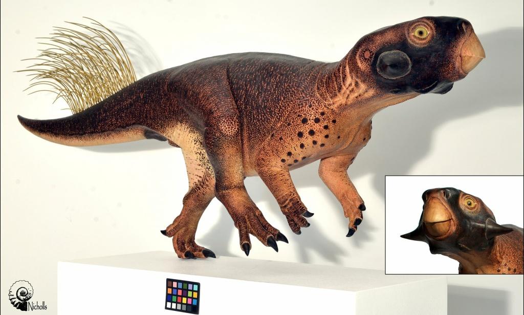 Psittacosaurus by Robert Nicholls. Photograph: Robert Nicholls