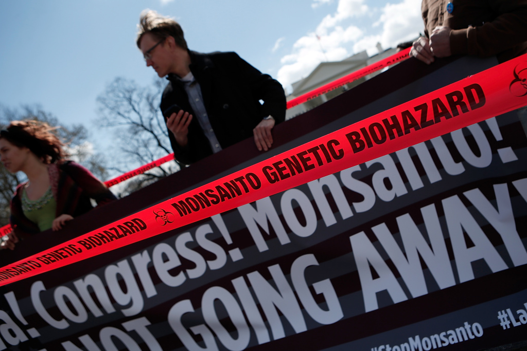 Activists protest against agricultural biotech company Monsanto outside the White House on March 27, 2013 in Washington, DC. Monsanto, which engineers genetically modified seeds, recently benefited from a section buried in the latest budget bill that allows the agribusiness giant to plant genetically-modified crops without judicial review to determine whether or not their crops are safe.