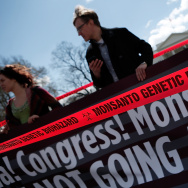 Activists Protests Against The Agriculture Industry's Lobby Influence Over Congress