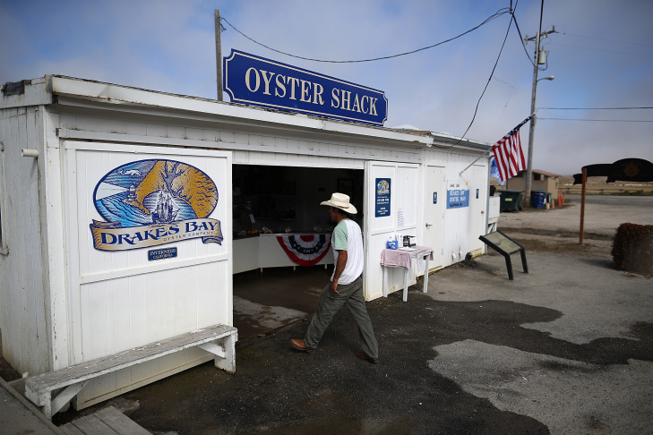 Oyster Farm On Point Reyes Nat'l Seashore Loses Court Appeal To Stay Open