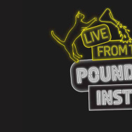 Live From The Poundstone Institute Logo