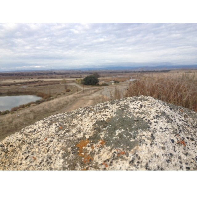 This Fresno trail faces the Sierra Nevada. The view was once green, then brown, then white with snowcapped mountains, and then brown again. (Ezra David Romero; #MyDrought)