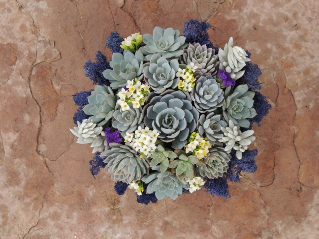 A succulent bouquet from Succulently Urban, the San Diego-based business created by Marialuisa Kaprielian.