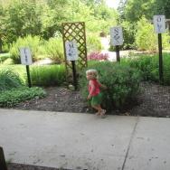 "In her book ""The Gardener and the Carpenter,"" developmental psychologist Alison Gopnik explains why the work of raising children should be more like gardening, and less like carpentry."