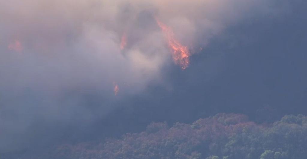 A screenshot of footage of the Scherpa Fire on Wednesday, June 15, 2016.