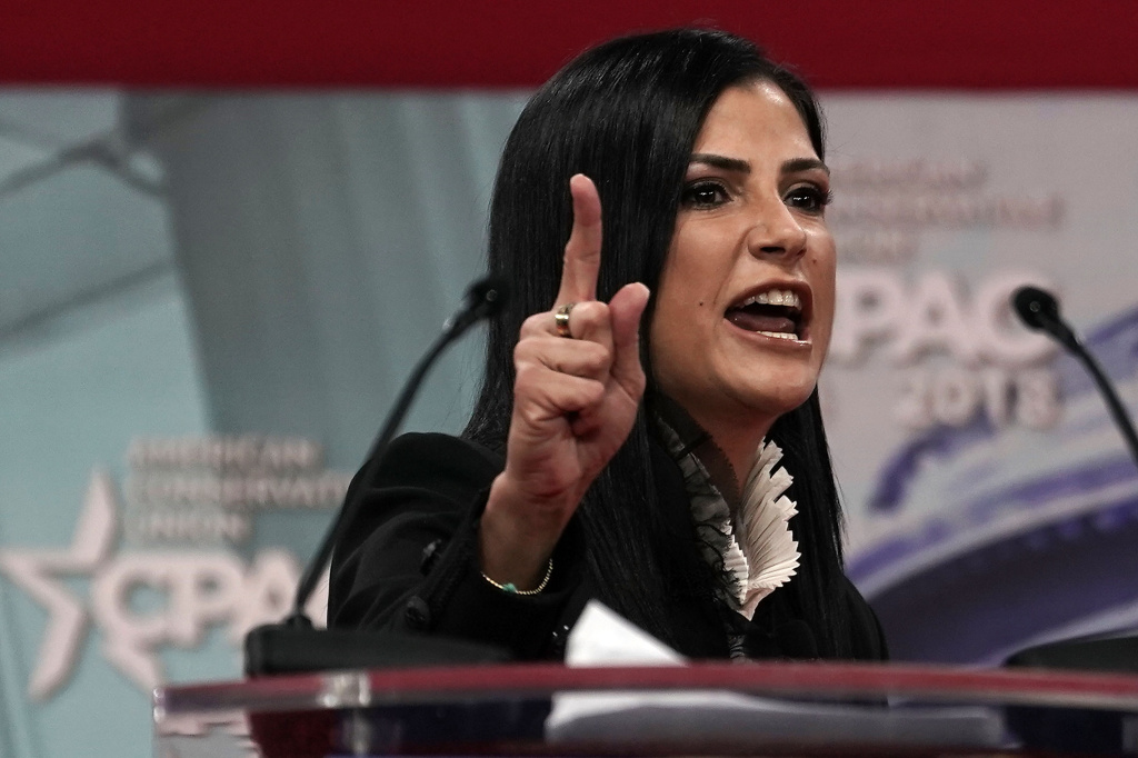 National Rifle Association (NRA) spokeswoman Dana Loesch speaks during CPAC 2018 February 22, 2018 in National Harbor, Maryland.