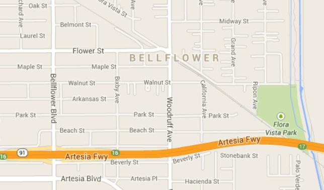 91 bellflower